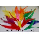 Plomes de colors per adornar les festes